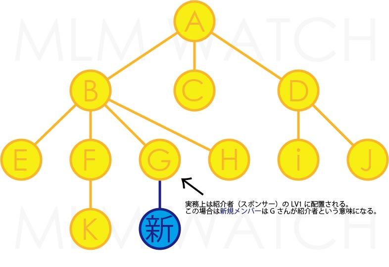 ネットワークビジネスの無制限幅ツリーと制限幅ツリーの違いを理解する