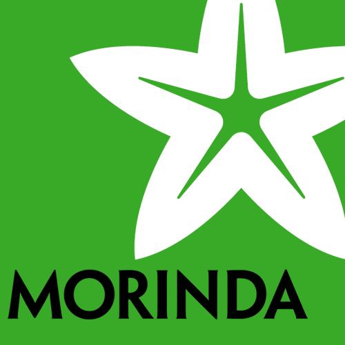 モリンダ(ノニジュース)ビジネスの仕組みを解読する【報酬プラン(システム)制度概要】